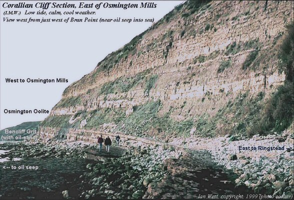 Old, pre-1999, photograph of the cliffs between Osmington Mills and Bran Point, Dorset