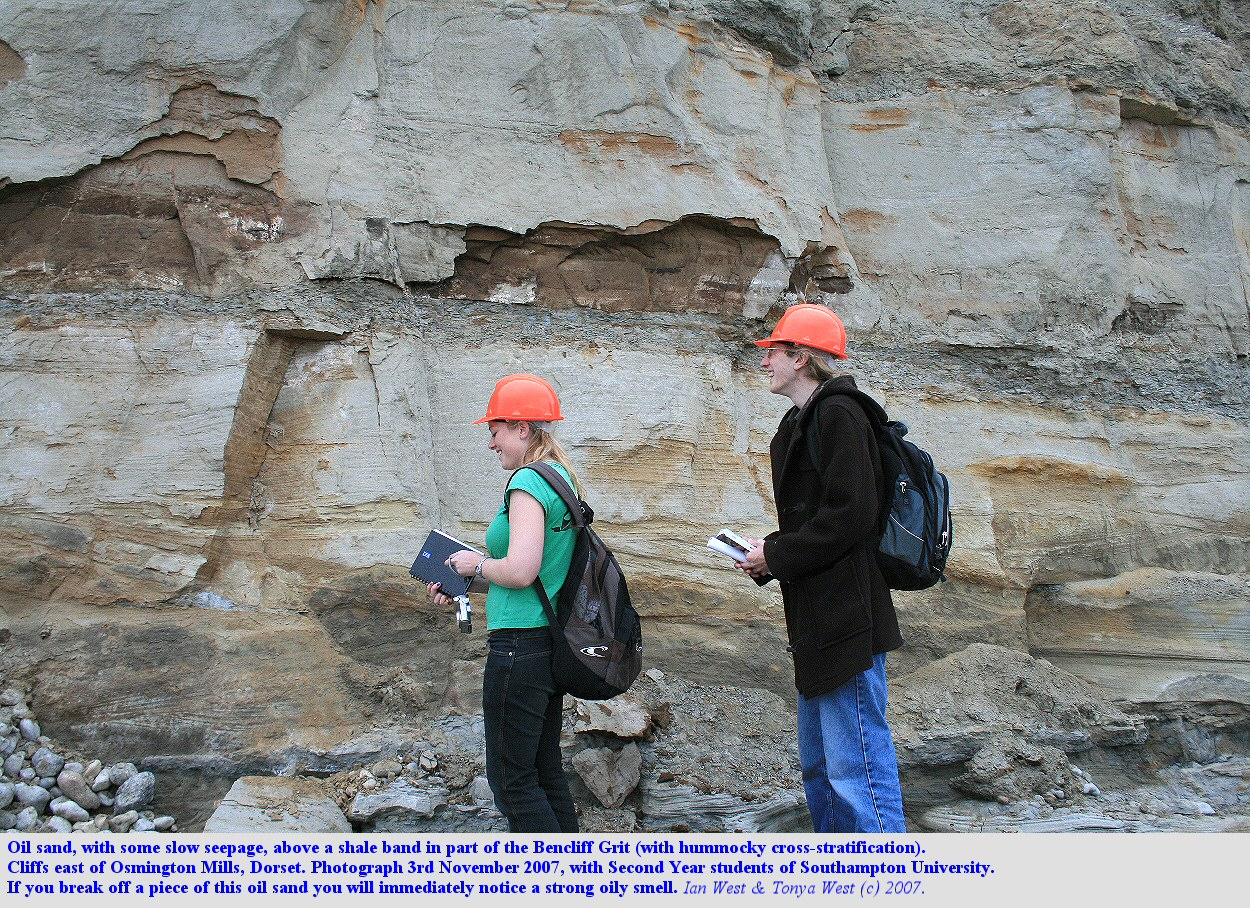 Bencliff Grit And Its Oil Sand Dorset By Dr Ian West
