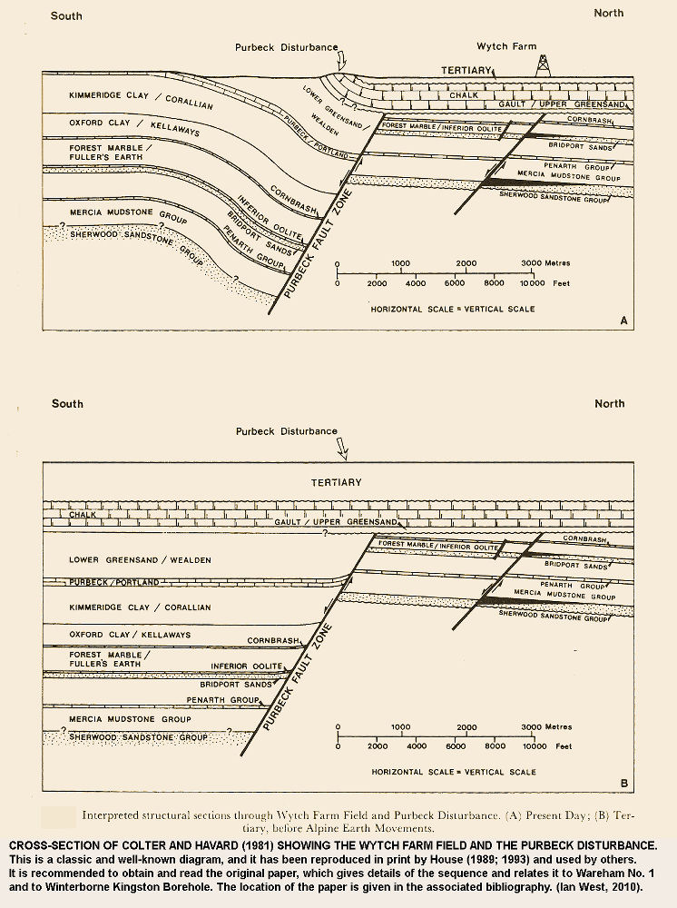 The classic cross-section of the Wytch Farm oilfield and Purbeck Disturbance by Colter and Havard, 1981