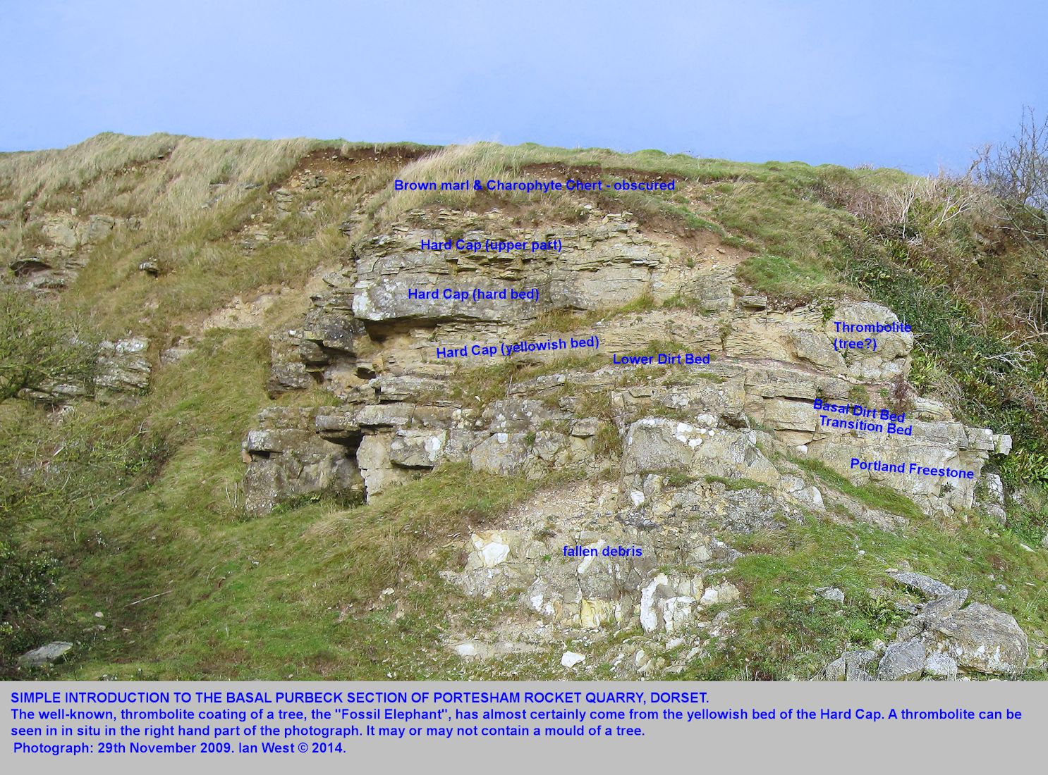 A general and introductory view of the basal Purbeck sequence exposed at Portesham Quarry, Dorset, in November 2009
