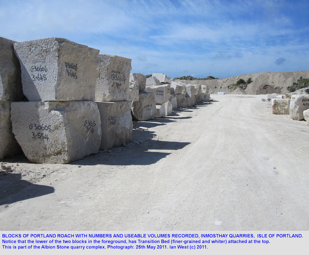 Blocks of Portland Roach, numbered and ready for cutting, Inmosthay Quarries, Isle of Portland, Dorset, 2011
