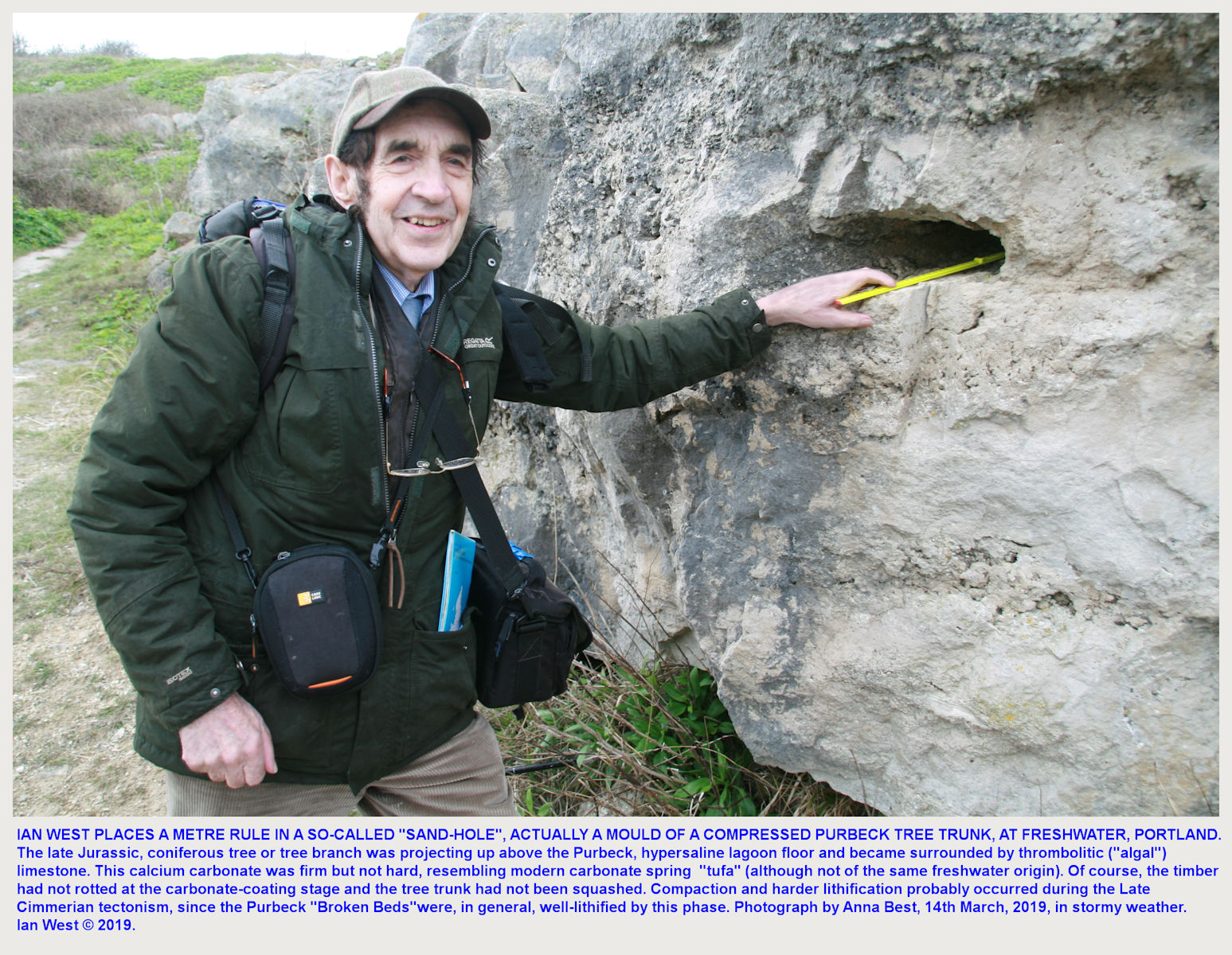 Ian West demonstrating a fossil tree branch mould in thrombolitic limestone of the Hard Cap, in a small quarry above Freshwater Bay, Isle of Portland, Dorset, 14th March 2019, with Anna Best