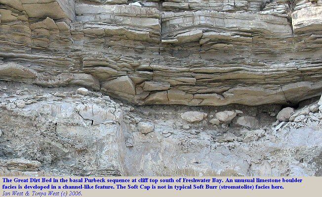 Boulders of limestone in a channel-like feature, Great Dirt Bed, south side of Freshwater Bay, Isle of Portland, Dorset