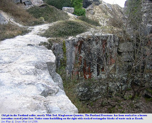 Old pit in the Portland Freestone at Kingbarrow Quarry, Isle of Portland, Dorset