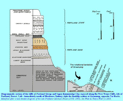 Section of the Portland Stone and Portland Sand at West Weare, Portland, Dorset, with details of the landslide at Greenump