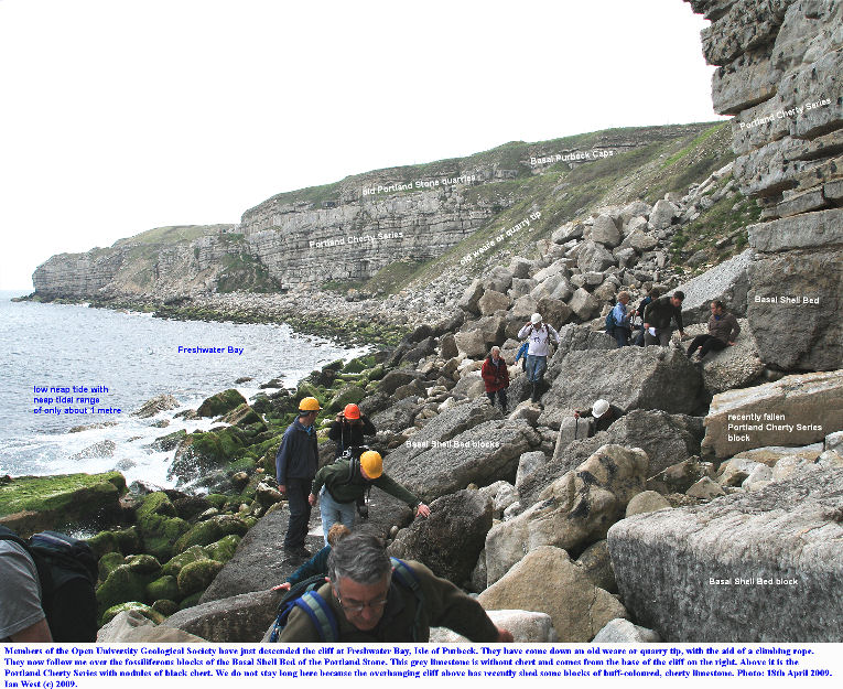 A group from the Wessex Branch of the Open University Geological Society, clamber over loose blocks of the Basal Shell Bed, near Red Door, Freshwater Bay, Isle of Portland, Dorset, April 2009