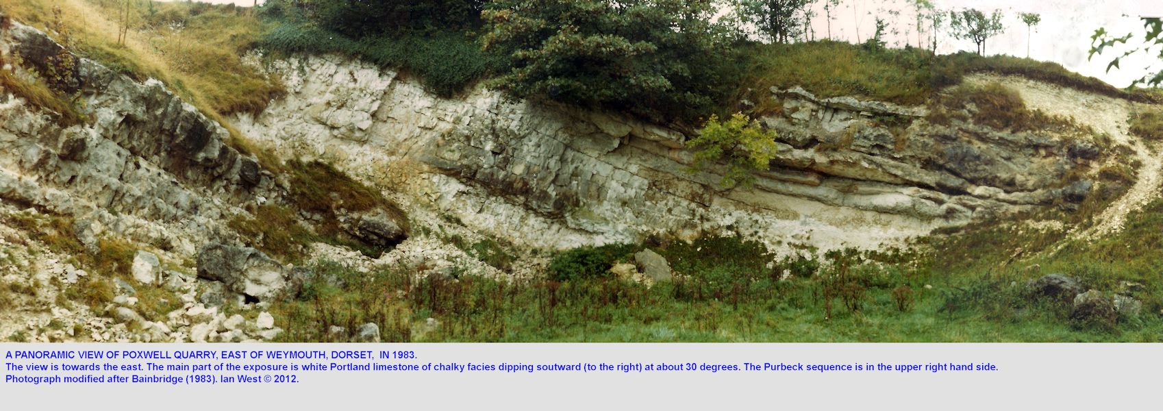 A panoramic view of Poxwell Quarry, Dorset, in 1983, after Bainbridge (1983)