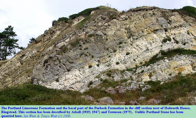 Portland and Purbeck strata in the cliff top, west of Holworth House, Ringstead Bay, Dorset, 2006