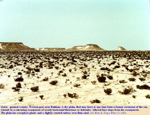 A low dry plain in western Qatar with distant escarpments of Dammam carbonates of Eocene age