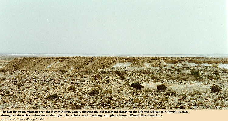 Limestone plateau near Zekrit, Qatar, showing old stabilised slopes and white areas where there is rejuvenated erosion