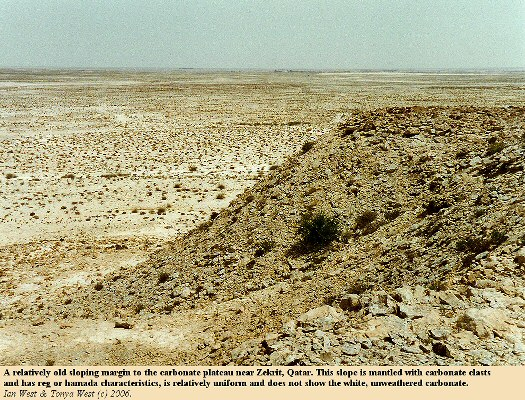 Old slope with reg or hamada at the margin of a carbonate plateau, near Zekrit, Qatar
