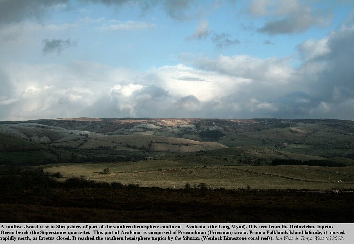 Part of Avalonia - the Long Mynd, Shropshire, England, 2008