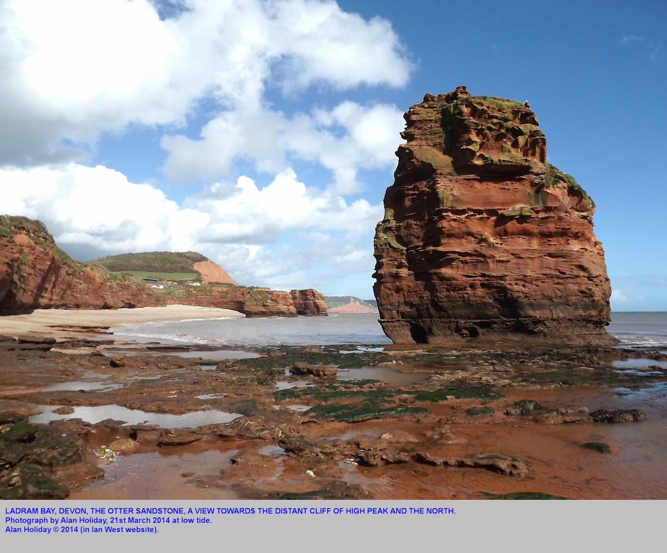 Ladram Bay, near Sidmouth, Devon, in the Triassic Otter Sandstone, as seen from the stack in southern part of the bay at low tide, 21st March 2014, photograph by Alan Holiday
