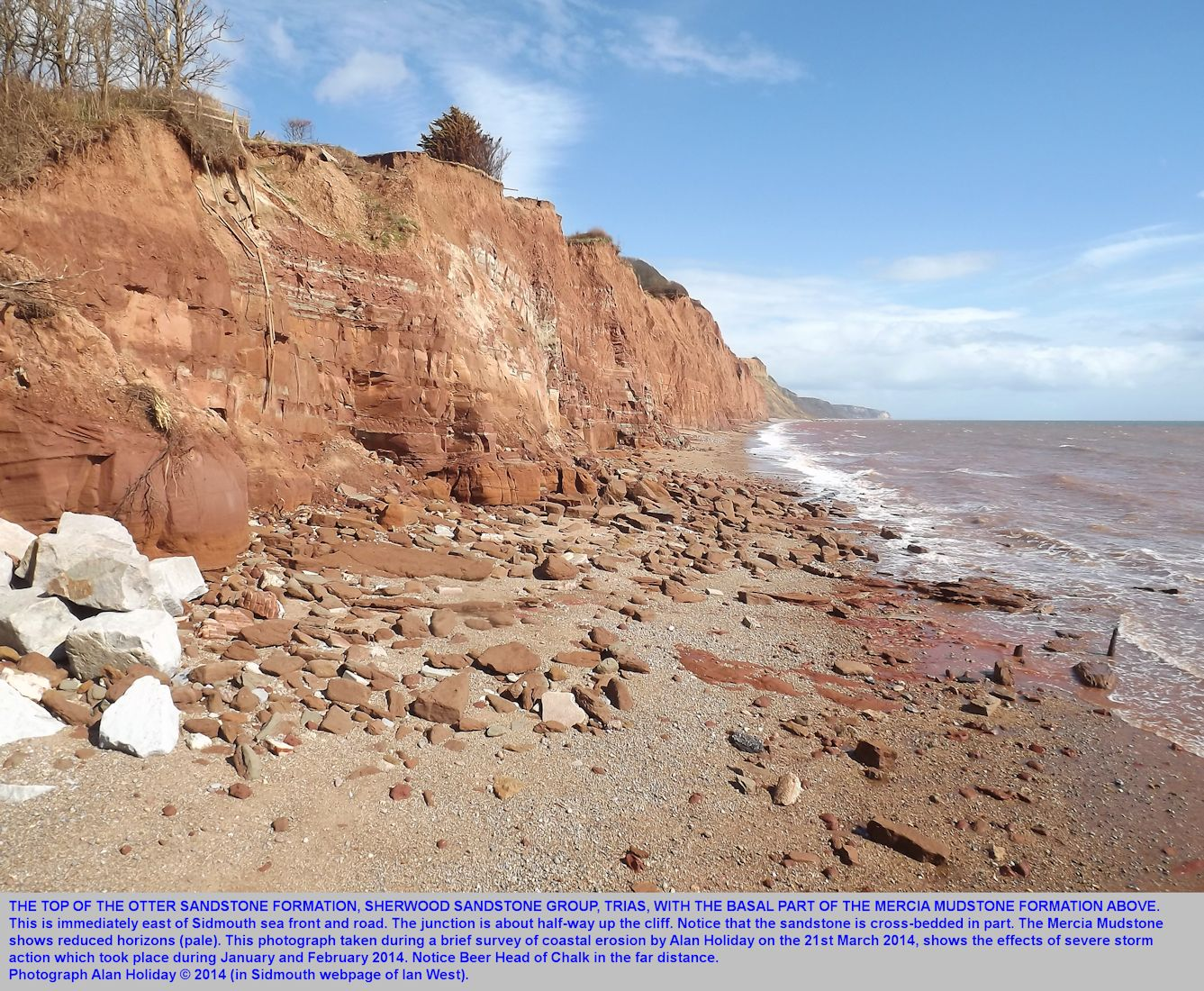 The junction of the Otter Sandstone and the Mercia Mudstone of the Trias, photographed at Sidmouth, Devon, by Alan Holiday on 21st February 2014, showing erosion from winter storms