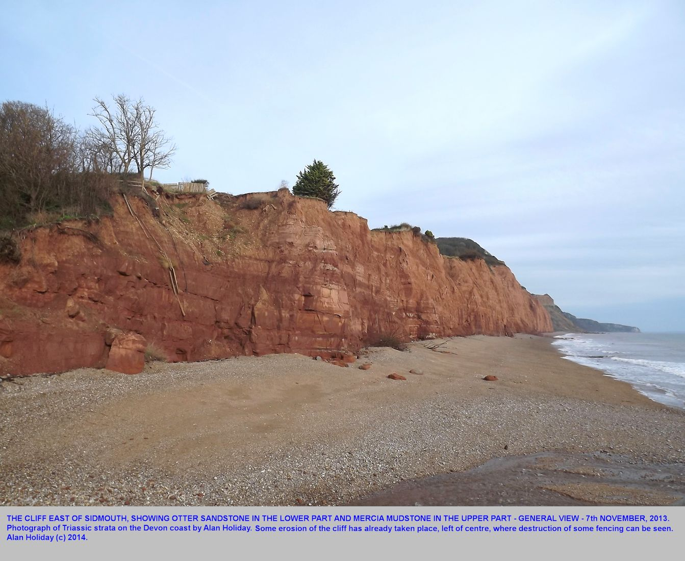A view of the cliffs east of Sidmouth, Devon, showing the top of the Otter Sandstone and the base of the Mercia Mudstone, 7th November 2013, photograph by Alan Holiday