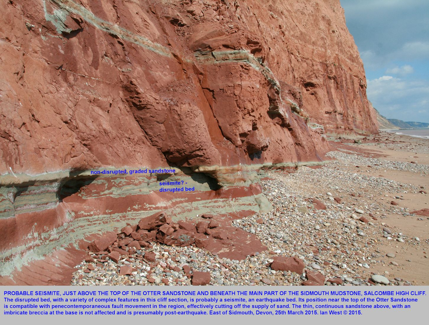 A probable seismite near the base of the Sidmouth Mudstone Formation, east of Pennington Point, Sidmouth, Devon