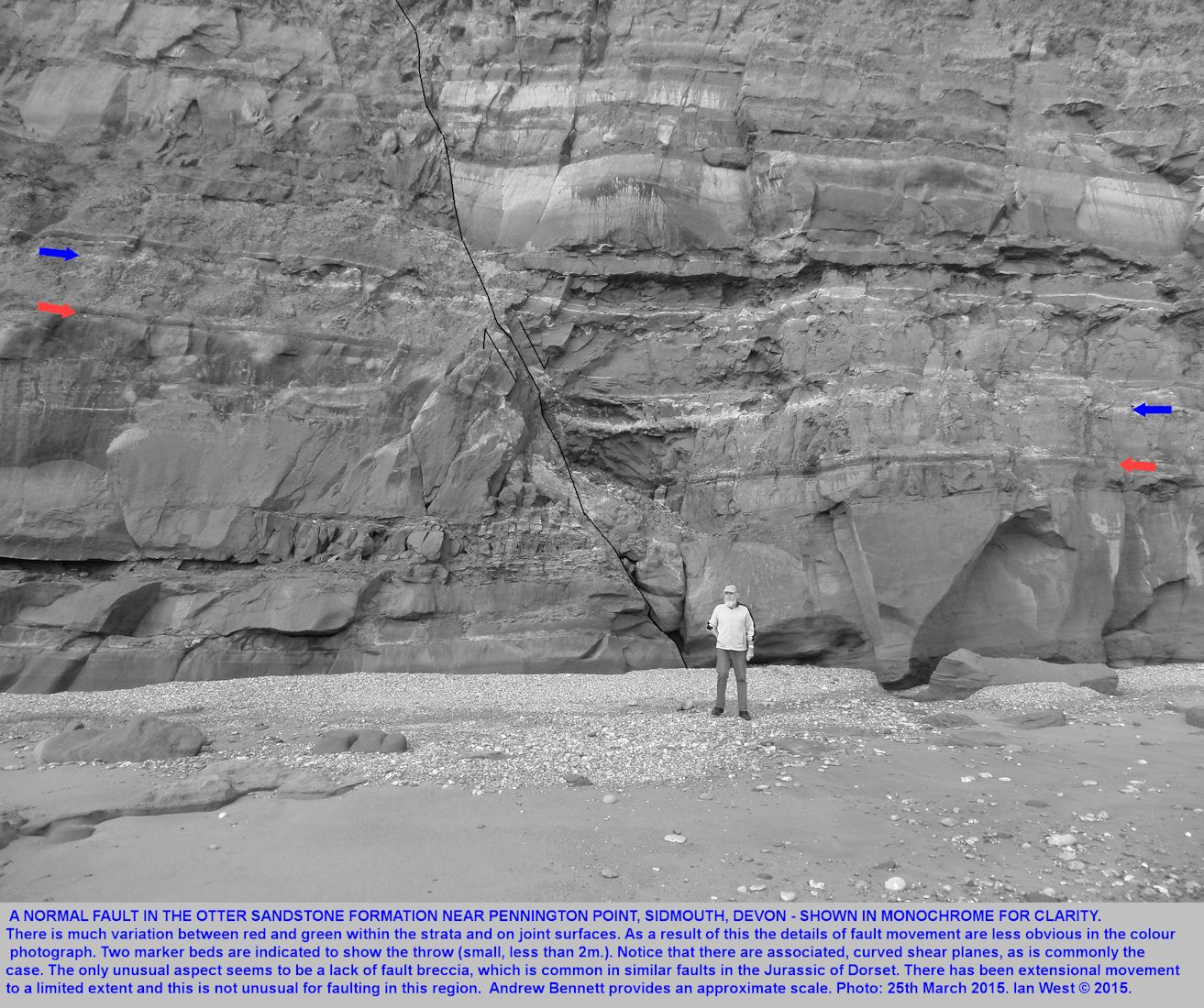 An extensional, normal fault near Pennington Point, east of Sidmouth sea front, Devon, 25th March 2015,monchrome version