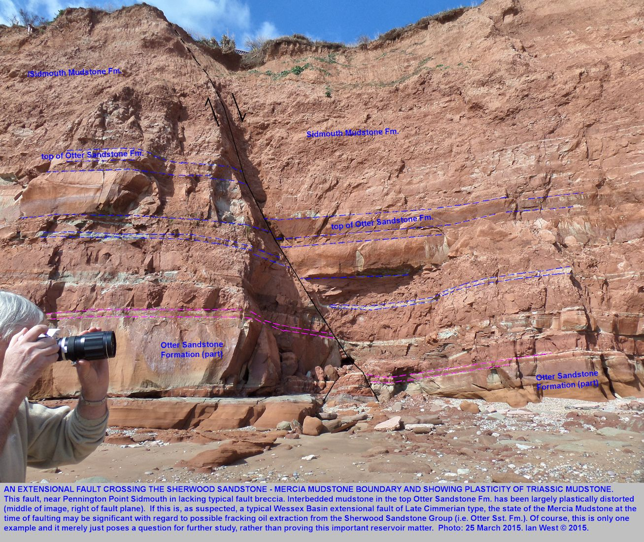 An extensional normal fault near Pennington Point, Sidmouth, Devon, with apparent plastic displacement of mudstone, 25th March 2015