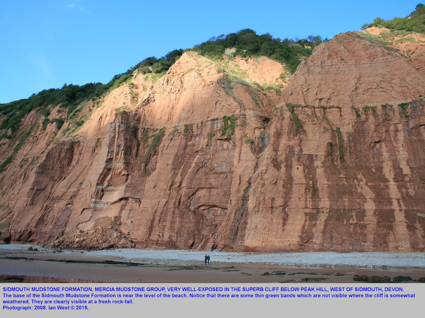 A high cliff of Sidmouth Mudstone Formation, Mercia Mudstone Group, Trias, at Peak Hill, west of Sidmouth, Devon