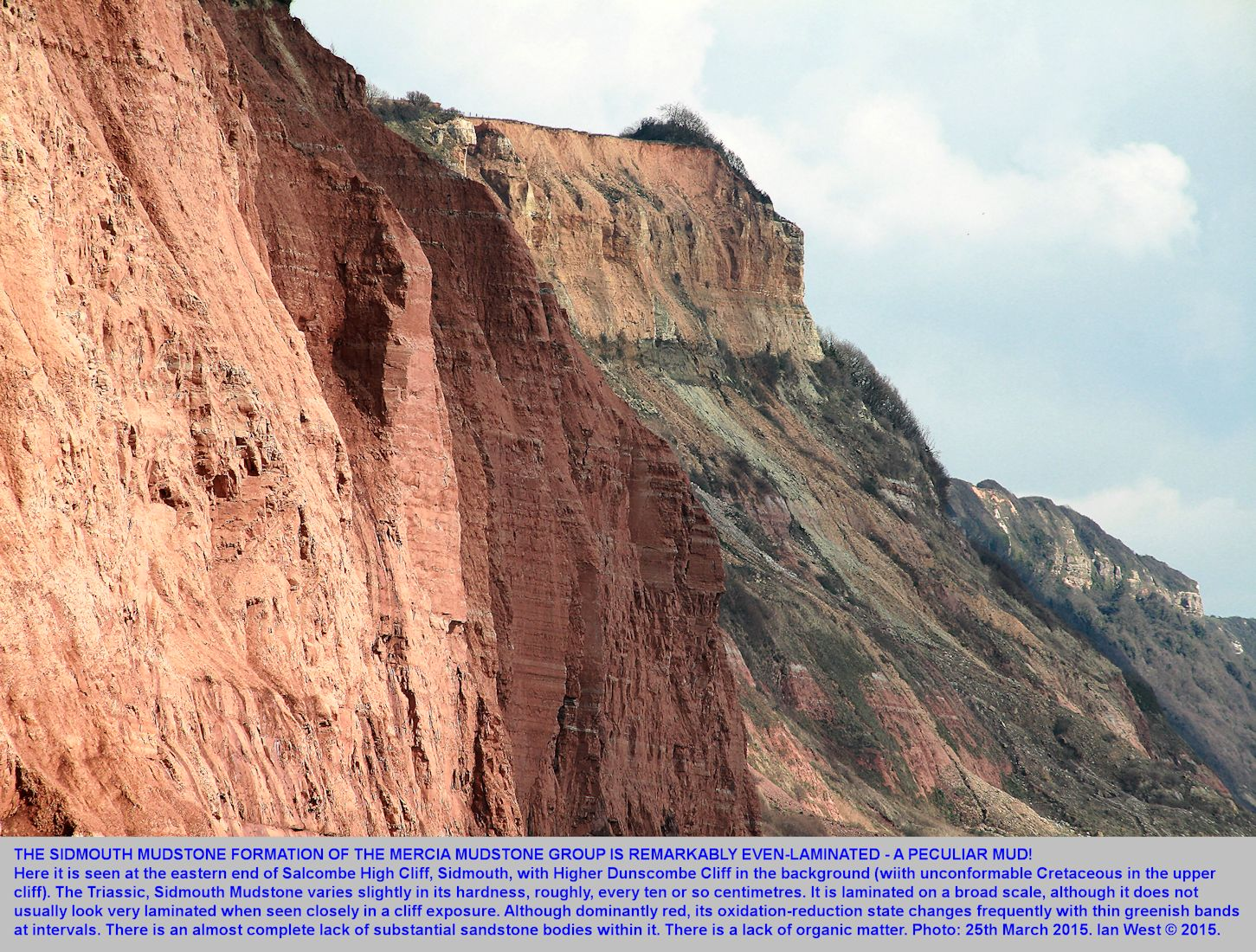 A high cliff of Sidmouth Mudstone, at the eastern end of Salcombe High Cliff, Sidmouth, Devon, shows the parallel bedding in the mudstone