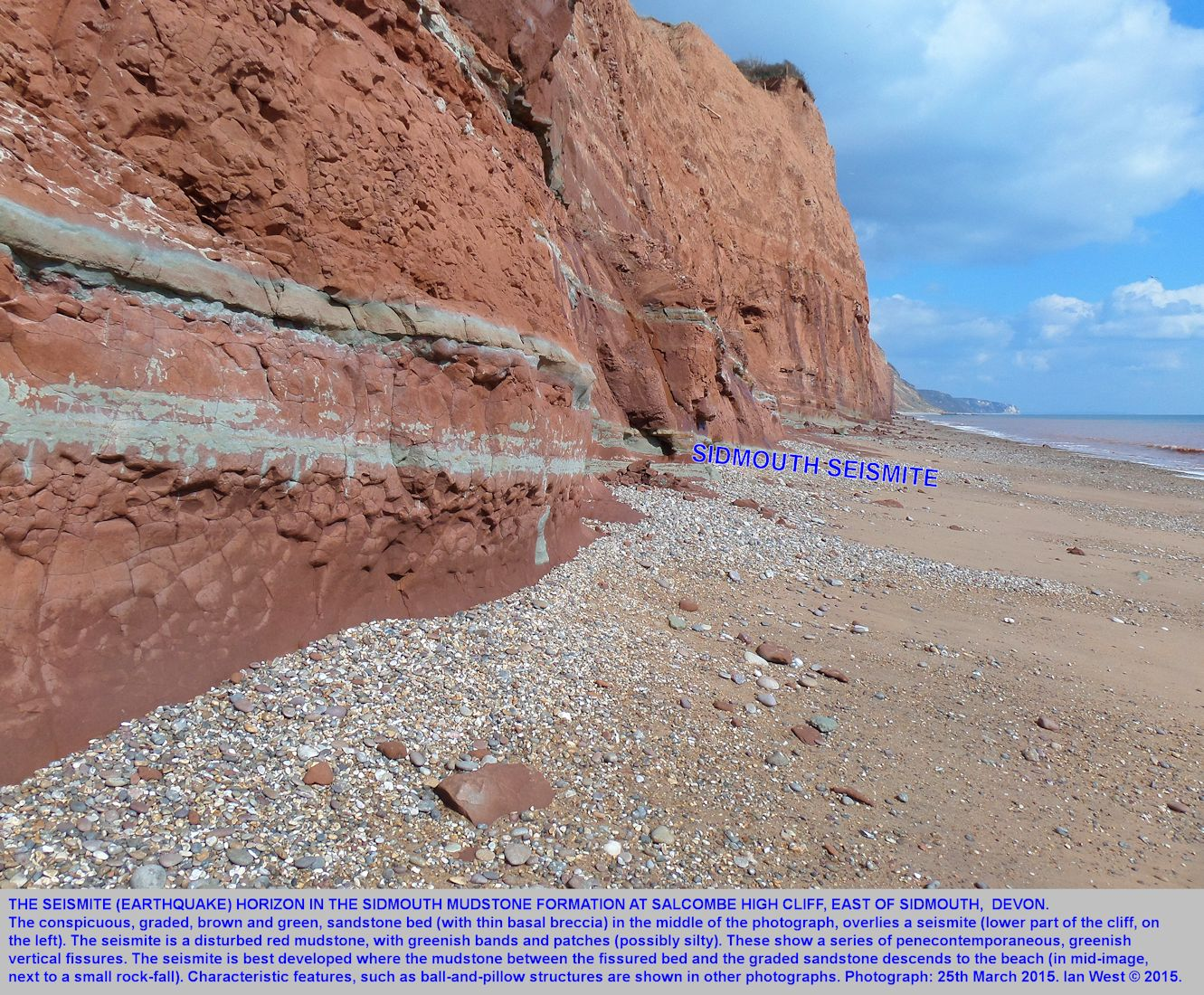 A seismite or earthquake bed in the basal part of the Mercia Mudstone Formation, part of Salcombe-High-Cliff, Sidmouth, Devon, 25th March 2015