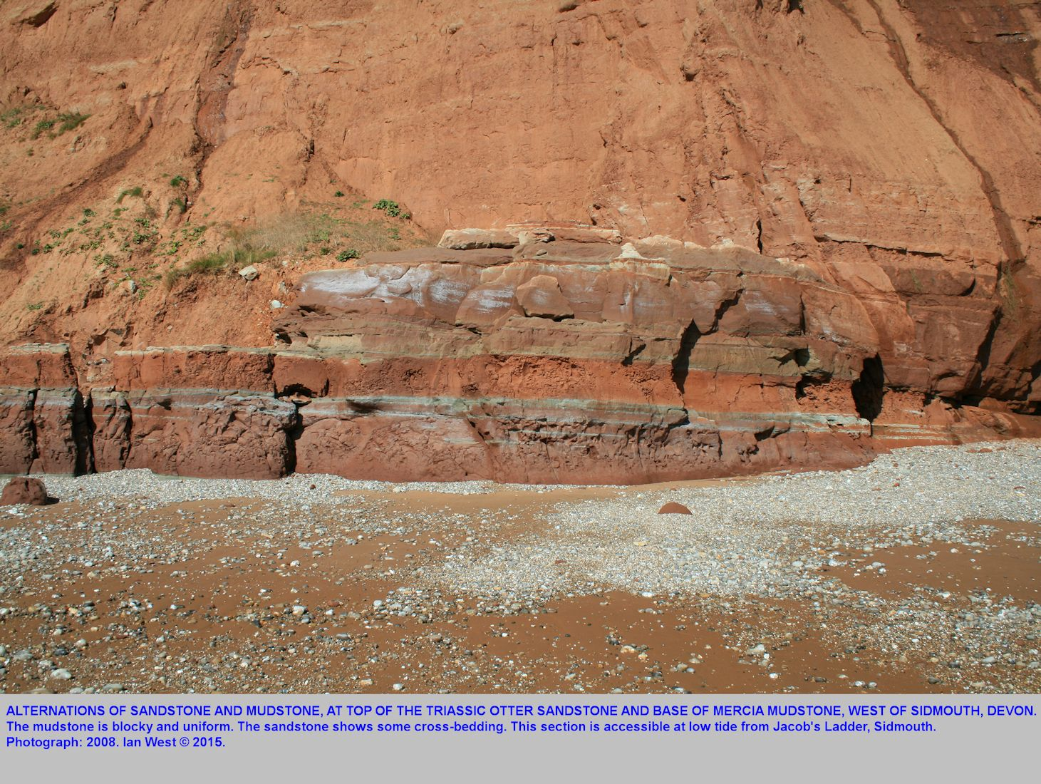 Alternations between sandstone and mudstone, approximate base of Mercia Mudstone and top of Otter Sandstone, west of Jacob's Ladder, Sidmouth, Devon