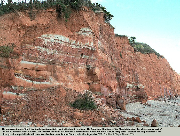 Uppermost part of the Otter Sandstone at the eastern cliffs of Sidmouth, Devon, 2008