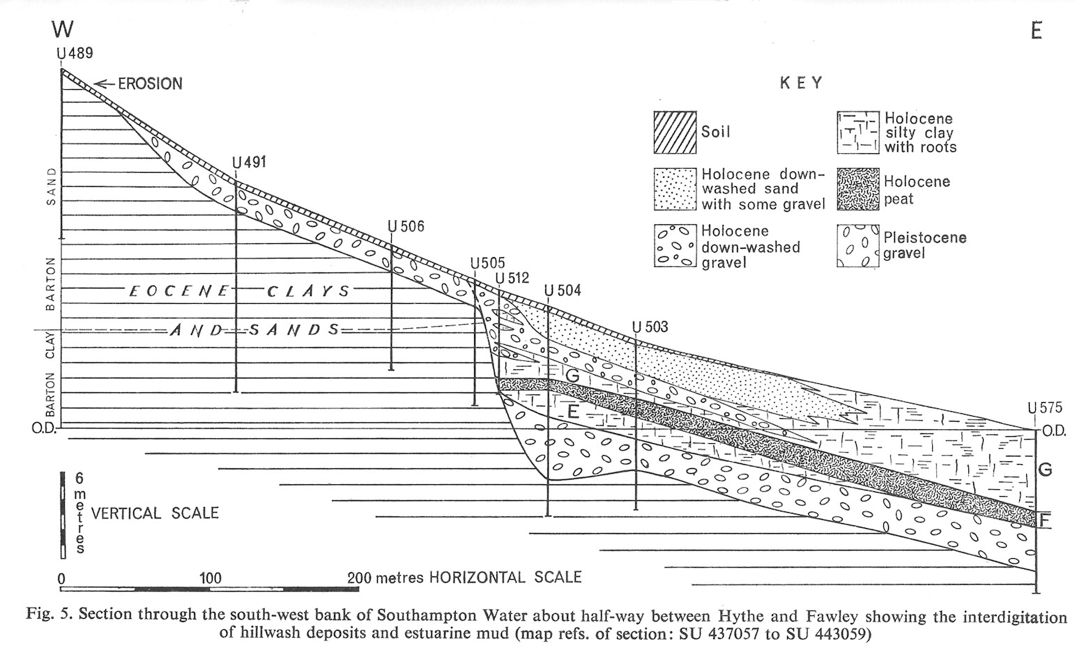 Fig 5 of Hodson and West, 1972, hillwash and estuarine mud deposits between Hythe and Fawley, Solent Estuaries, southern England