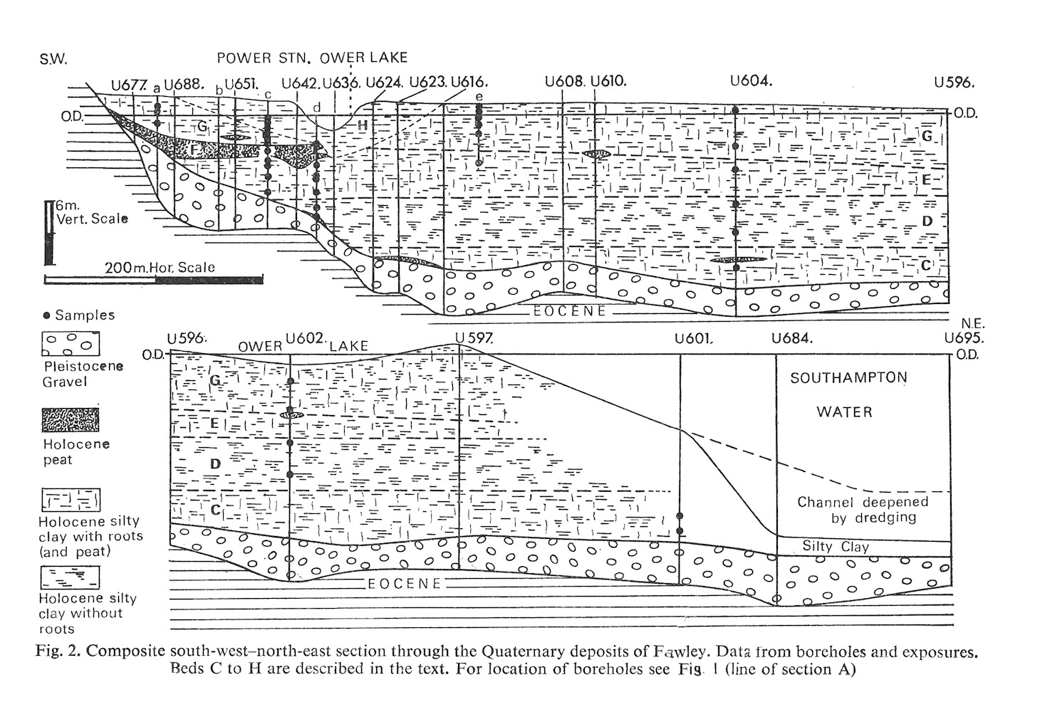 Fig. 2 - Composite south-west-north-east section through the Quaternary deposits of Fawley, Hampshire, Southampton Water