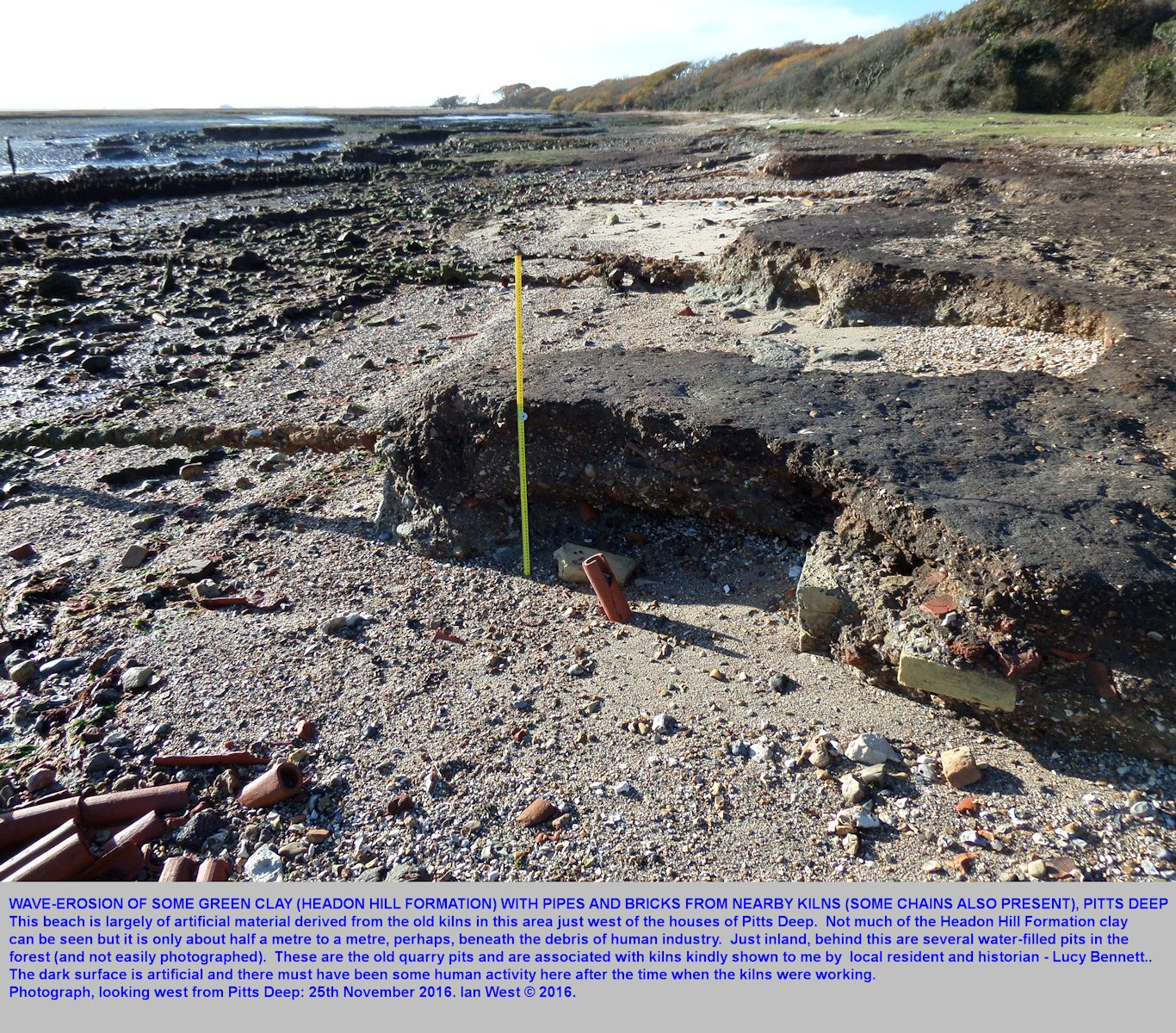 Green clay of the Headon Hill Formation is present beneath debris of bricks and pipes and other material, and old rusty chains, the Pitts Deep kiln area, just west of the houses, Pitts Deep, Solent Estuaries, southern England, November 2016