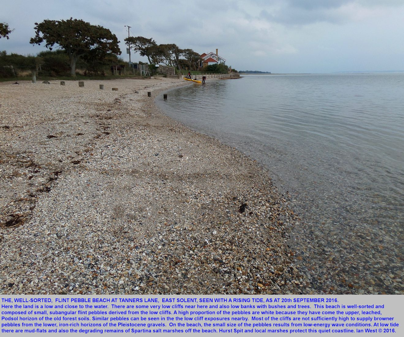 Tanners Lane Beach, with small, largely white, flint pebbles, West Solent Estuary, near Lymington, southern England, 20th September 2016