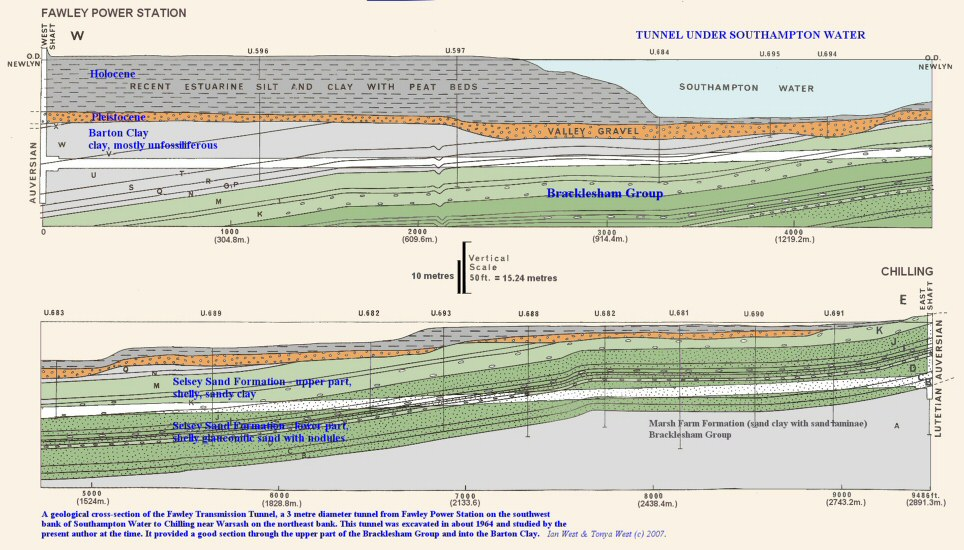 Geological cross-section of the Fawley Tunnel, Southampton Water, southern England