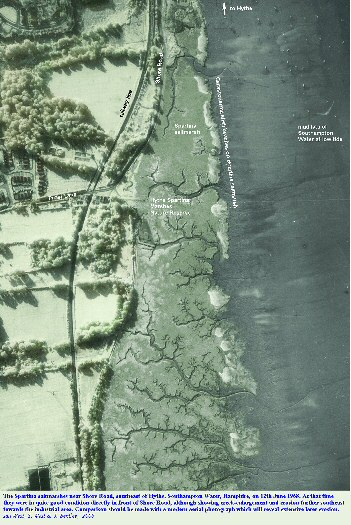 Spartina saltmarshes at Hythe, Southampton Water, seen in a modified version of an old aerial photograph of 1968