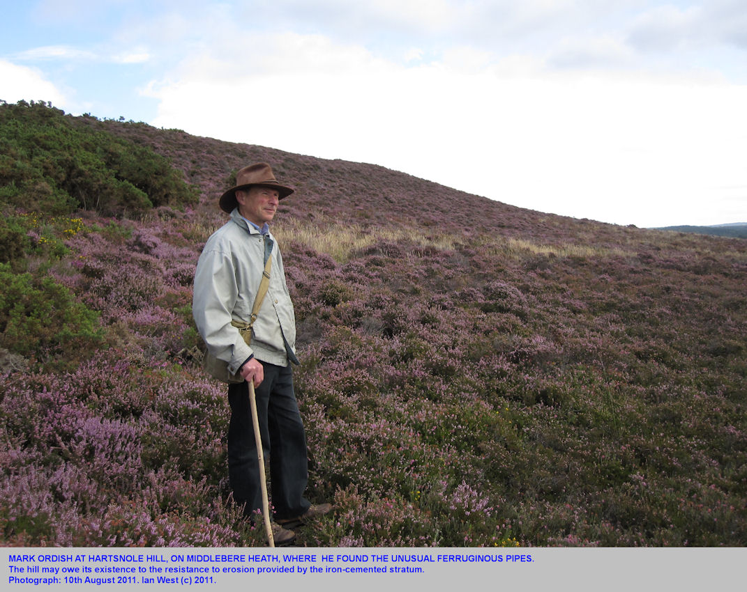 Mark Ordish at Hartsnole Hill, Middlesbere Heath, Dorset, where he found the ferruginous pipes, 10th August 2011