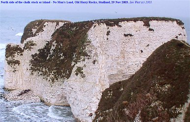 The Foreland or No Man's Land, a small Chalk island, now split into two, at Old Harry Rocks, Dorset
