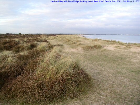 Foredunes or Zero Ridge looking northward from near Knoll Beach, Studland