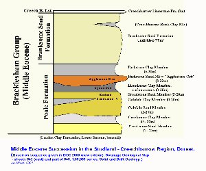 Middle Eocene succession including the