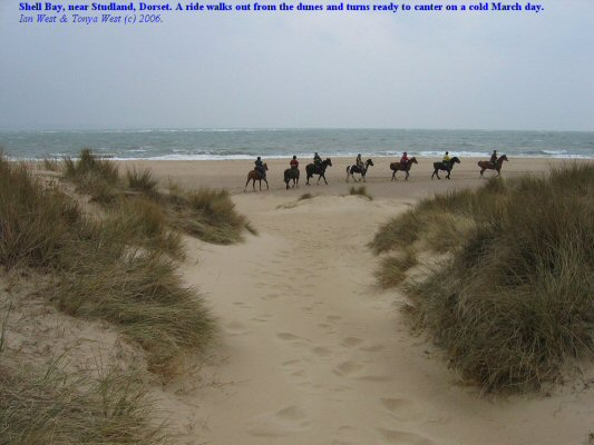 A ride turns onto the beach at Shell Bay, near Studland, Dorset