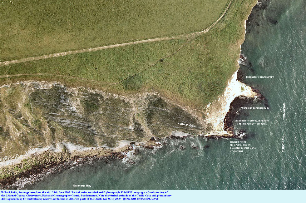 Ortho-rectified aerial photograph of Ballard Point, Swanage Bay, Dorset, 24th June 2005, courtesy of Channel Coastal Observatory, with zonal data from Rowe (1902)