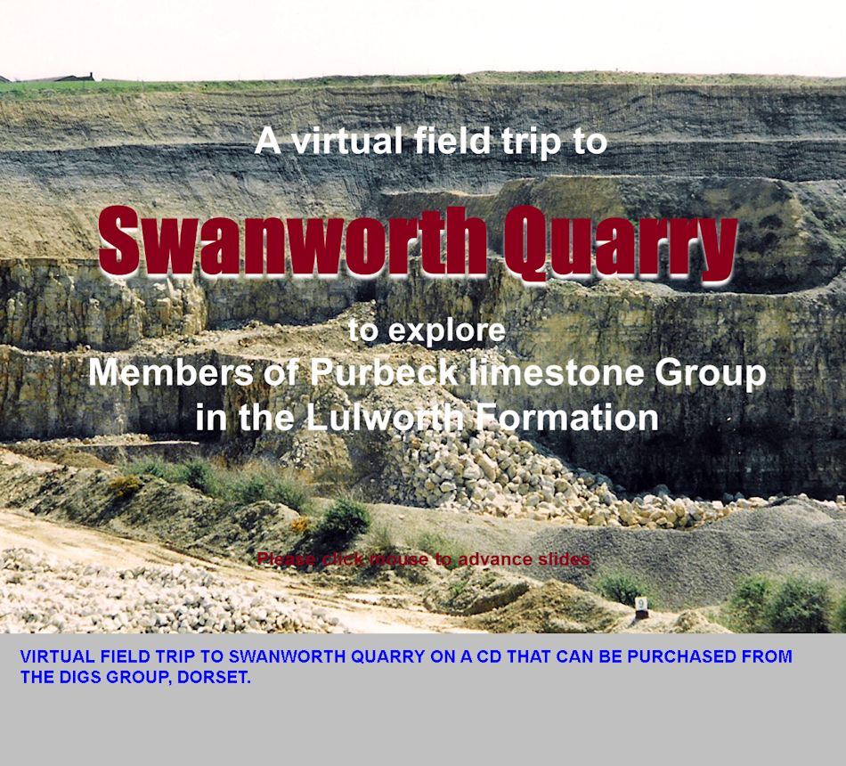 The DIGS Virtual Field Trip to Swanworth Quarry, available for purchase on a CD