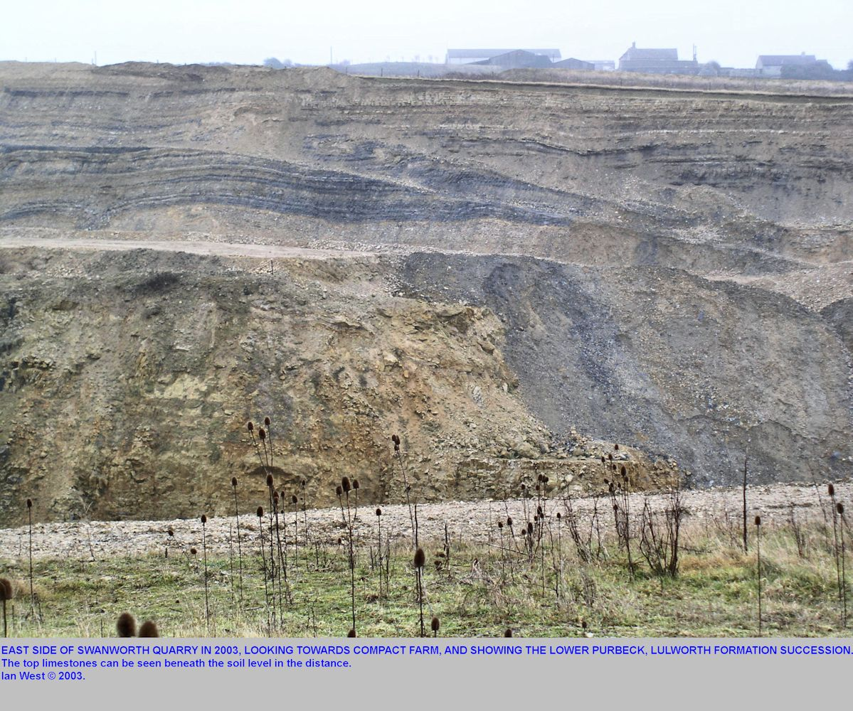 The Lower Purbeck or part of the Lulworth Formation, showing the top limestones, Swanworth Quarry, looking east towards Compact Farm