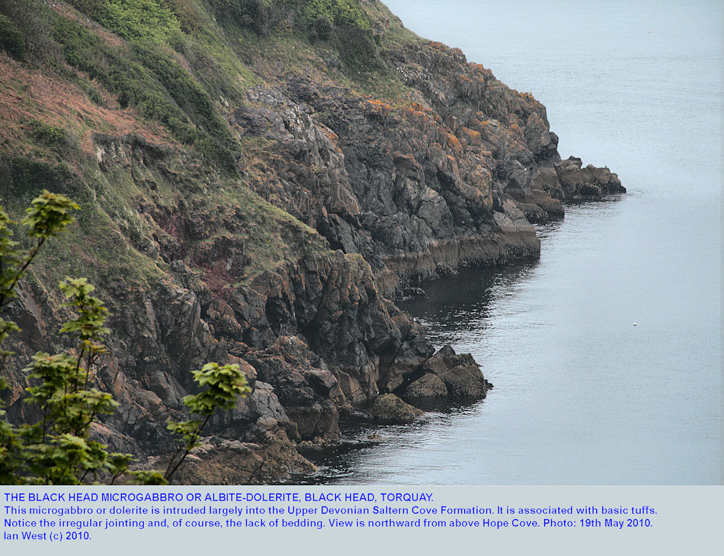 The Black Head microgabbro or dolerite, seen from above Hope Cove, Torquay, Devon, 2010
