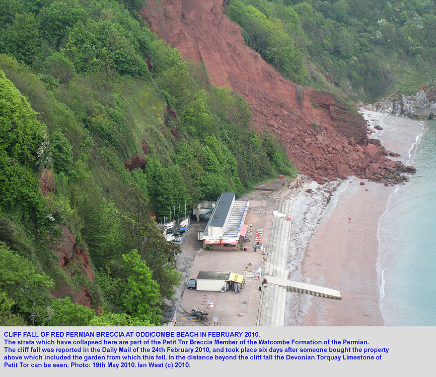 A cliff fall of Permian sandstone and breccia, Oddicombe Beach, Torquay, Devon, 2010