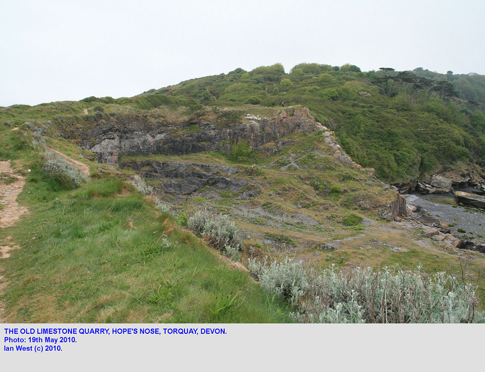 Old quarry in Devonian Limestone, Hope's Nose, Torquay, Devon, 2010