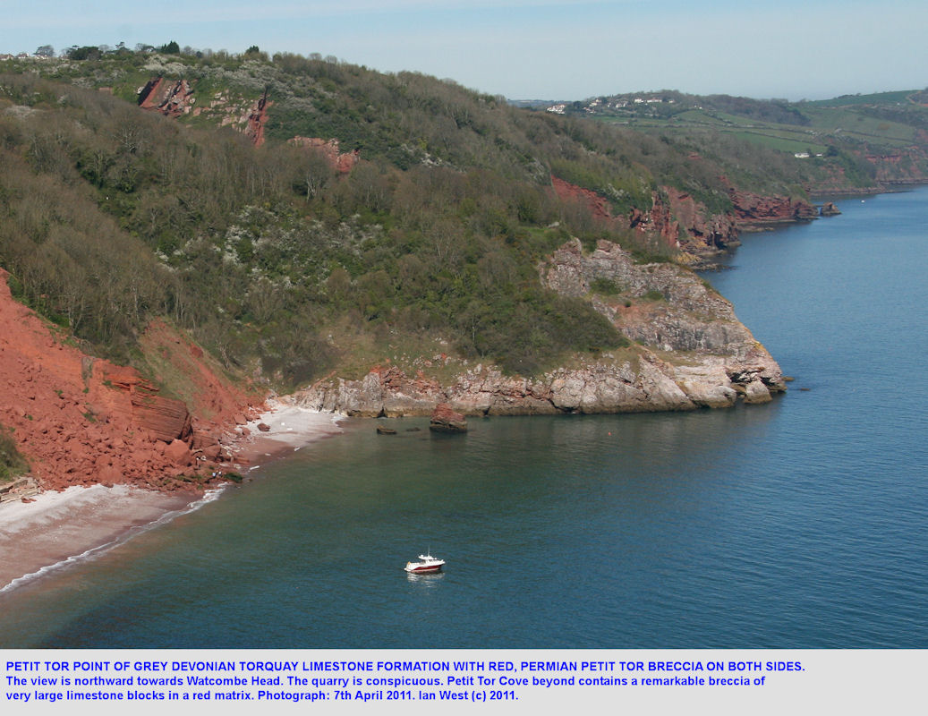 Petit Tor Point, Babbacombe, Torquay, Devon, a headland of Devonian Limestone, April 2011