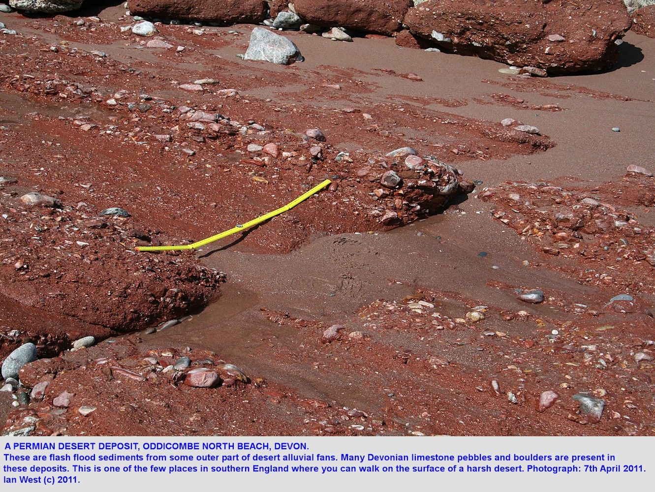 A red desert deposit in the Permian Oddicombe Breccia, Oddicombe North Beach, Torquay, Devon, 2011