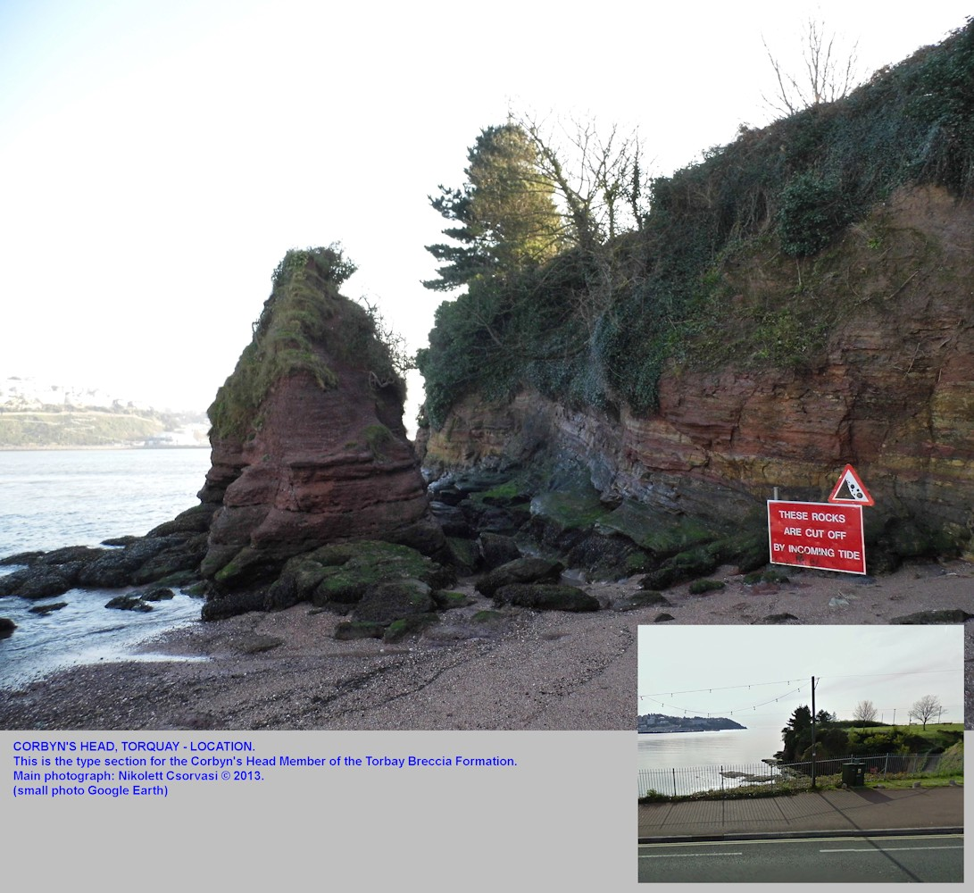Corbyn's Head, Torquay, Devon, the location of the cliff section of the Corbyn's Head Member