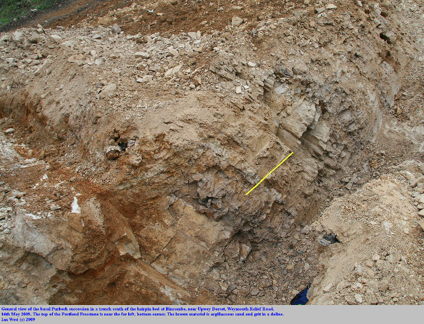The basal Purbeck succession, in a trench excavation arranged by James Codd, at the works for the Weymouth Relief Road, at Bincombe, Dorset, 14th May 2009, shown unlabelled