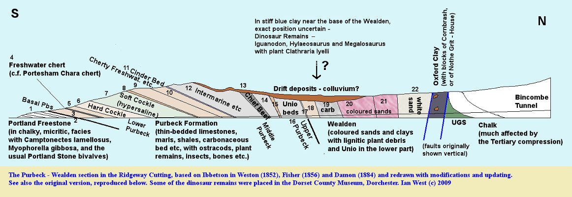 The Purbeck and Wealden summarised sequence in the Ridgeway Cutting, in the 1850s, near Upwey, Dorset, with additional information on Oxford Clay, Upper Greensand and Chalk outcrops, updated by Ian West, 2009