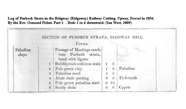 Fisher's Log of the Purbeck strata of Ridgway Railway Cutting, Dorset, Beds 1 to 6